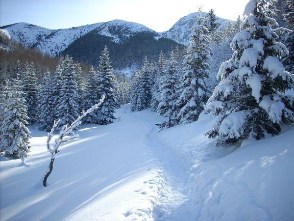 Seria niebezpiecznych zdarzeń w Tatrach. Aż 8 wypadków jednego dnia