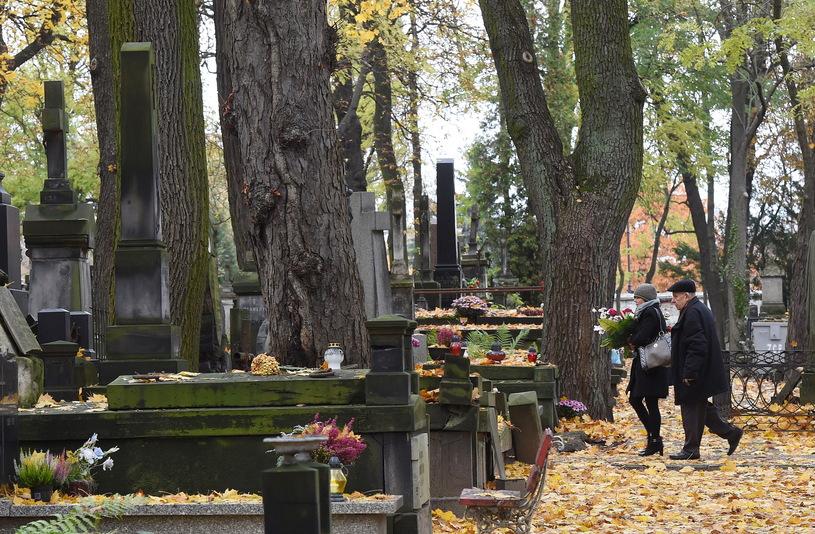 Łódź: w kweście na rzecz Starego Cmentarza zebrano blisko 60 tys. zł