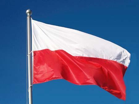 Gliński: pracujemy nad ustawą dot. zmiany godła i flagi