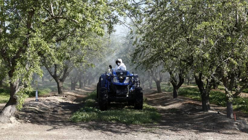 USA: farmerzy są pierwszymi ofiarami wojny handlowej USA – Chiny
